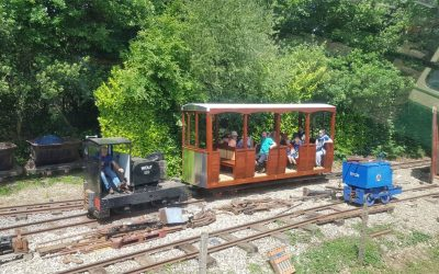 The Great Bush narrow gauge railway